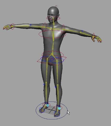 3D rigging terms